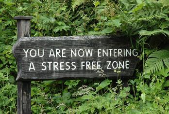 Stress_free_zone