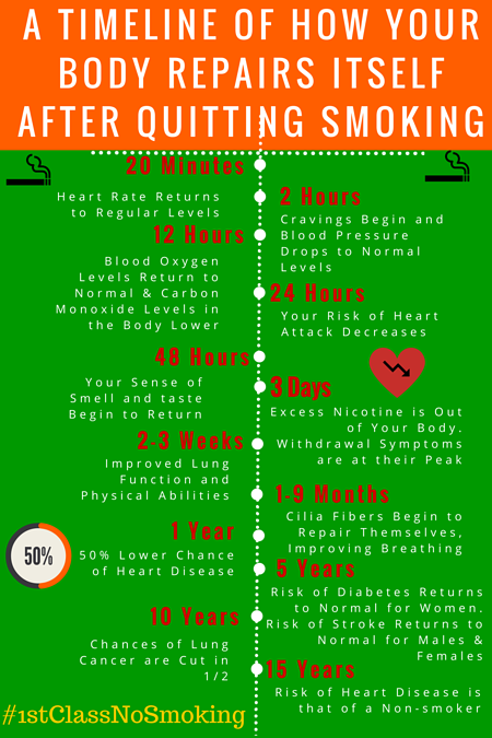 how-the-body-repairs-itself-after-quitting-smoking