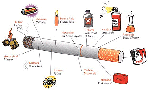 What is Inside a Cigarette