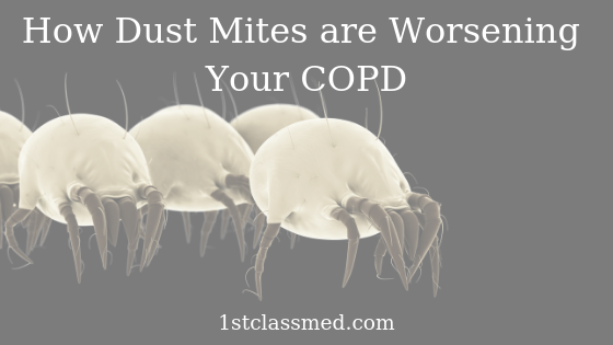 How Dust Mites are Worsening Your COPD