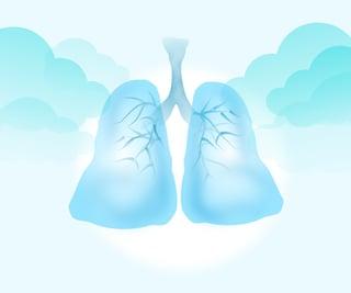 clear lungs.jpg