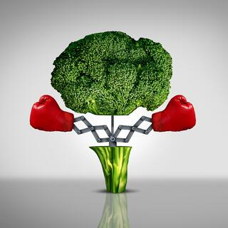 broccoli fighting.jpg