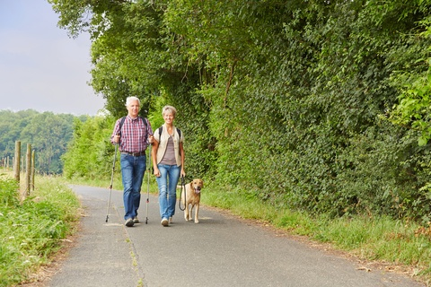 elderly couple walking a dog