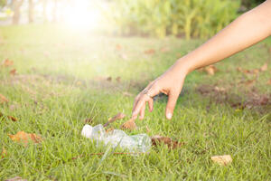 cleaning a public park
