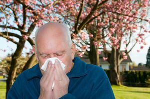 older man blowing his nose from allergies